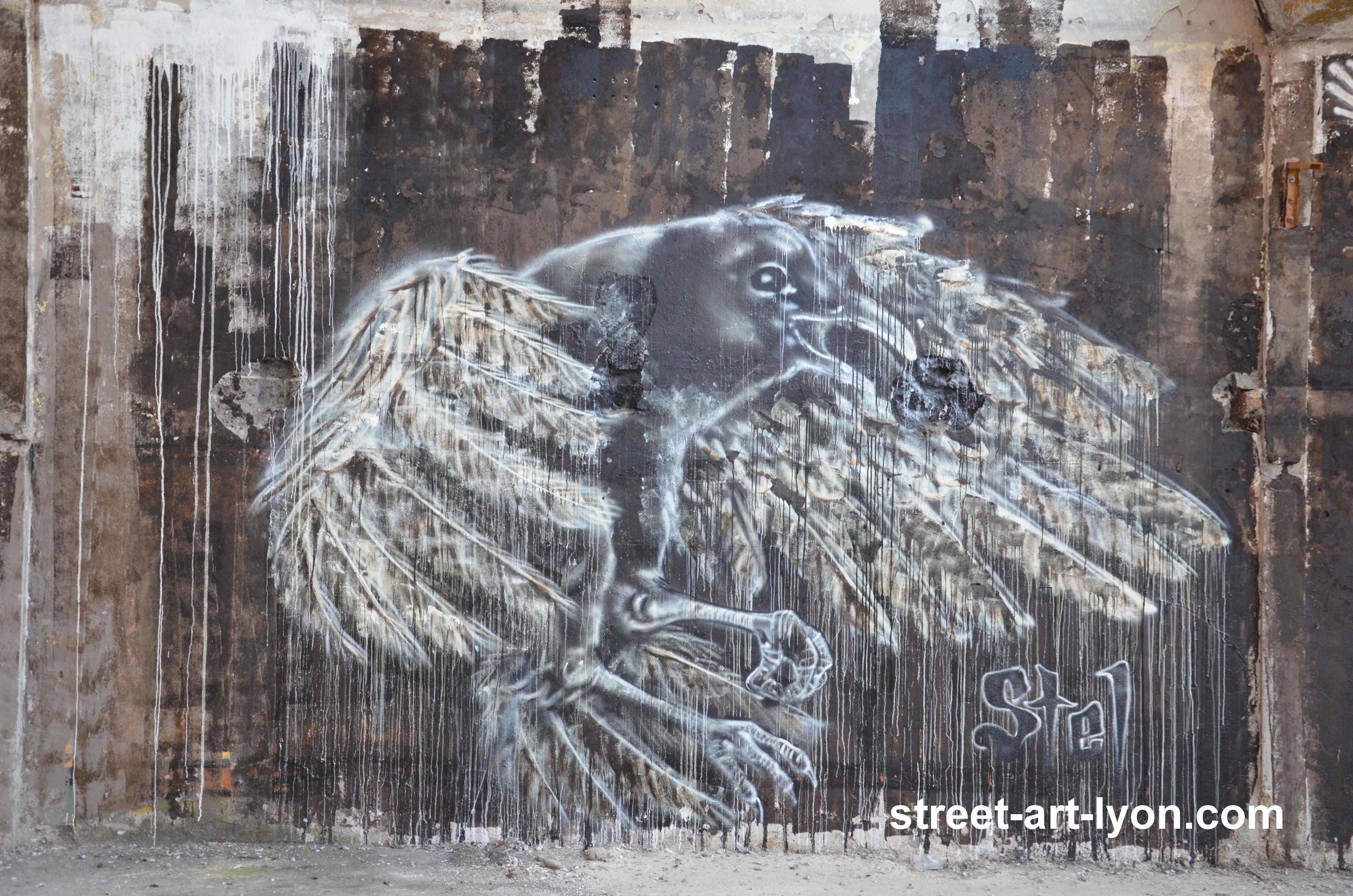 Villeurbanne stel corbeau