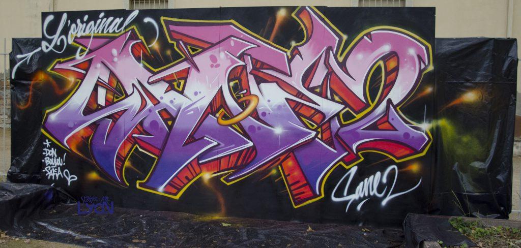 sane2-original