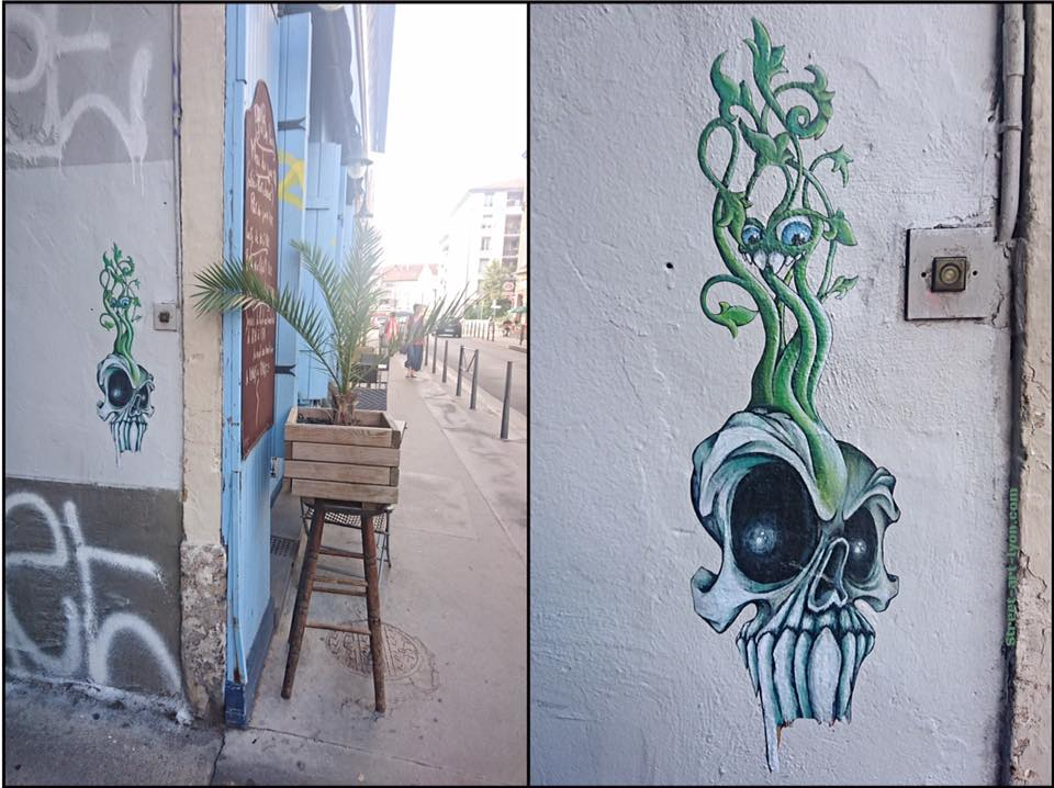 vegetal skull par cap phi street art lyon. Black Bedroom Furniture Sets. Home Design Ideas