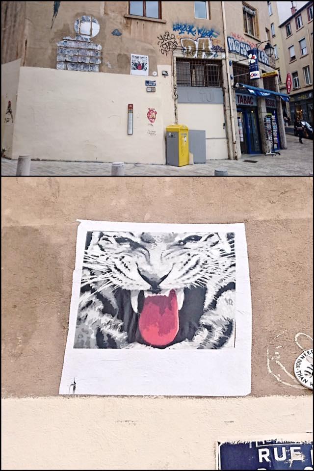big ben-tigre
